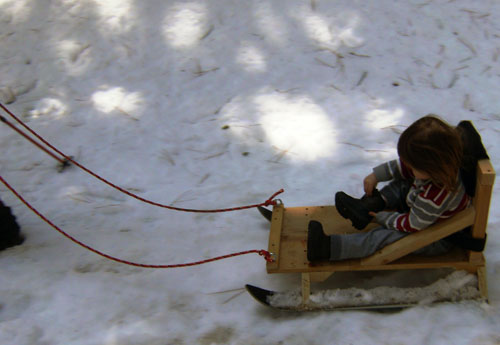 home made sled